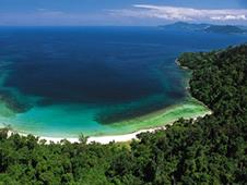 Ekonomika aut na Borneu